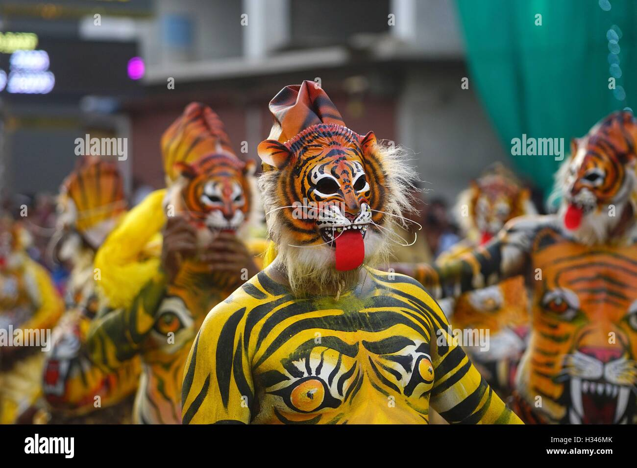 Trained dancers with their carefully painted bodies guise of tigers perform the famous Pulikali streets of Thrissur - Stock Image