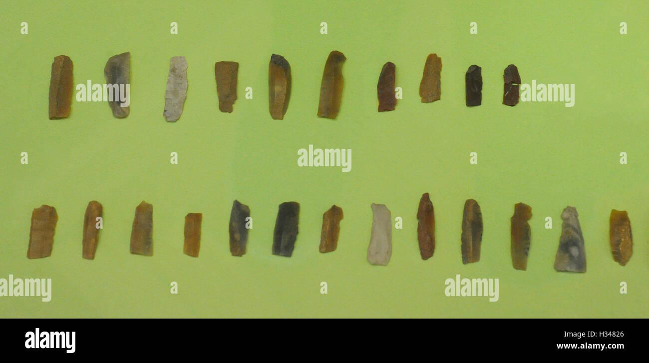 Poland. Prehistory. Flint flakes from Jastrzebia Gora. Archaeological Museum. Gdansk. - Stock Image