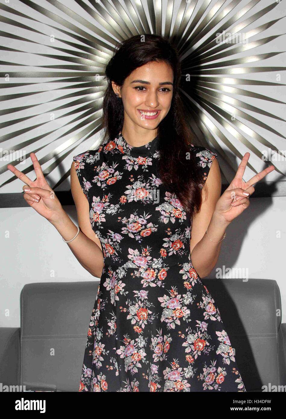 Bollywood Actor Disha Patani During Stock Photos Bollywood Actor