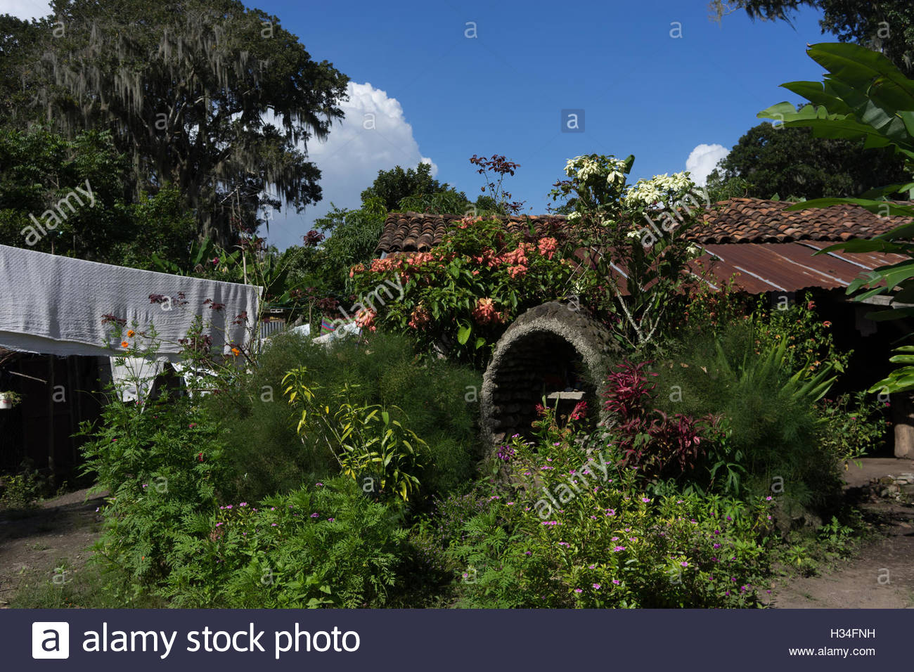 Nicaraguan campo house surrounded by flowers which is typical of country houses.  Clothes hanging on the line is - Stock Image