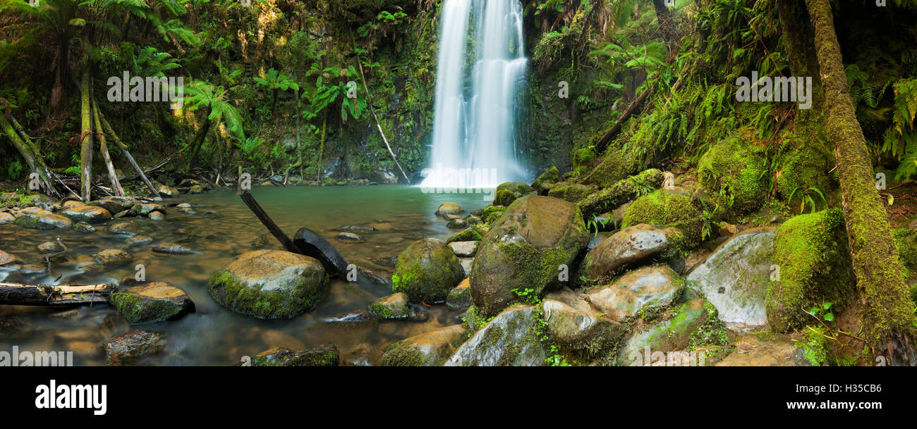 A beautiful temperate rainforest with waterfalls. The Beauchamp Falls in the Great Otway National Park, Victoria, - Stock Image