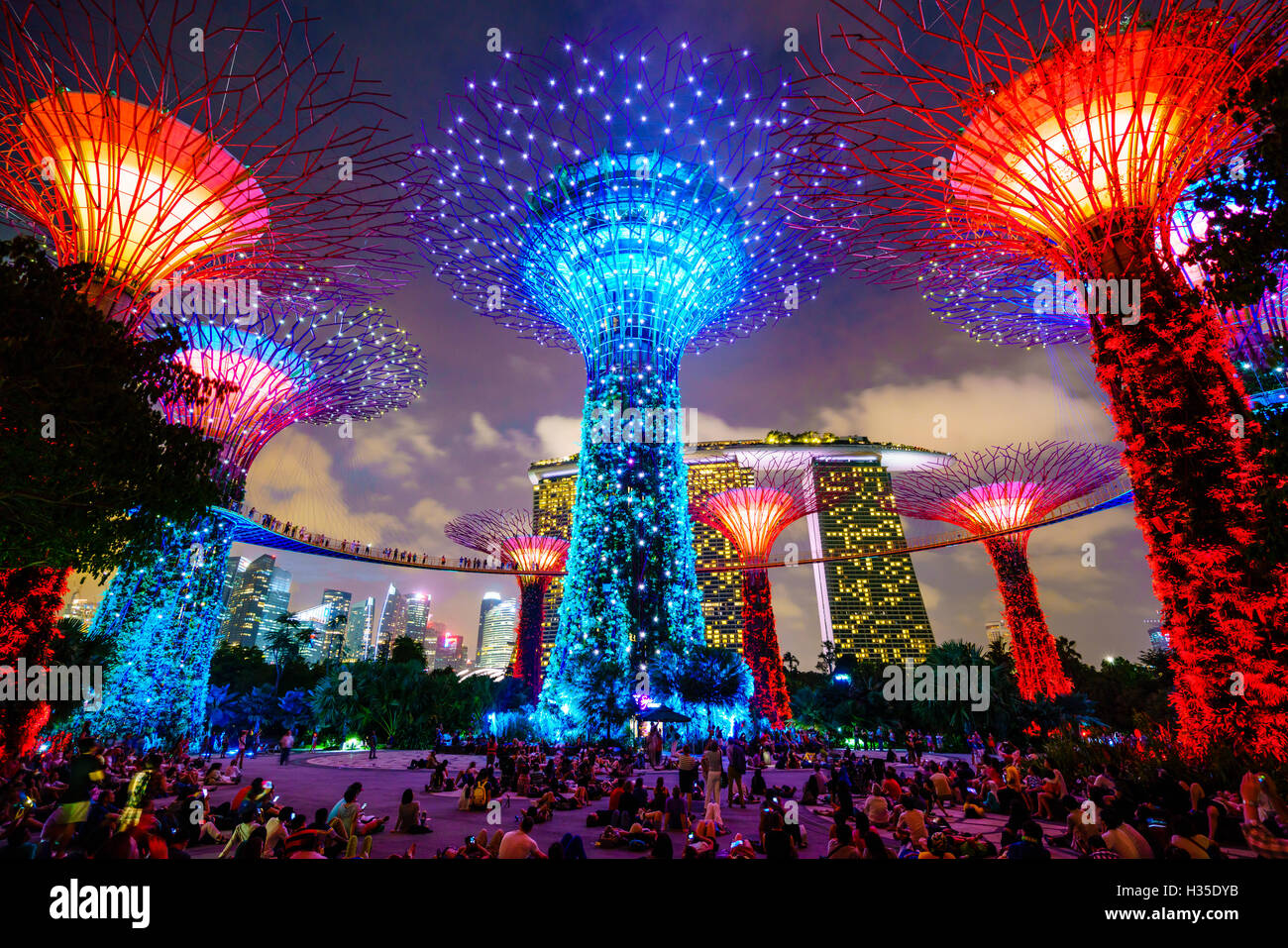 Supertree Grove In The Gardens By The Bay, A Futuristic Botanical Gardens  And Park, Illuminated At Night, Marina Bay, Singapore