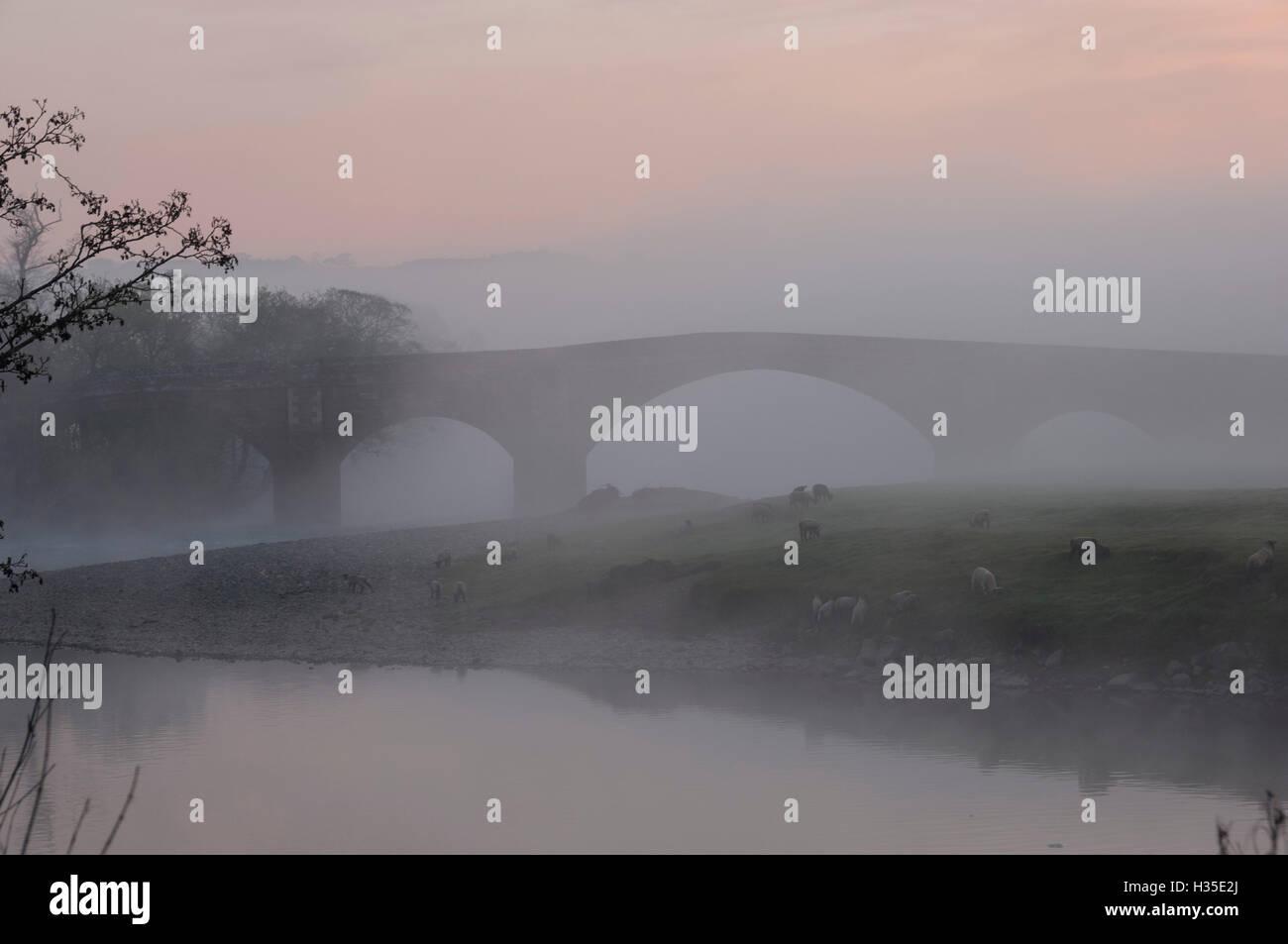 Eden Bridge, Lazonby, Eden Valley, Cumbria, England, UK - Stock Image