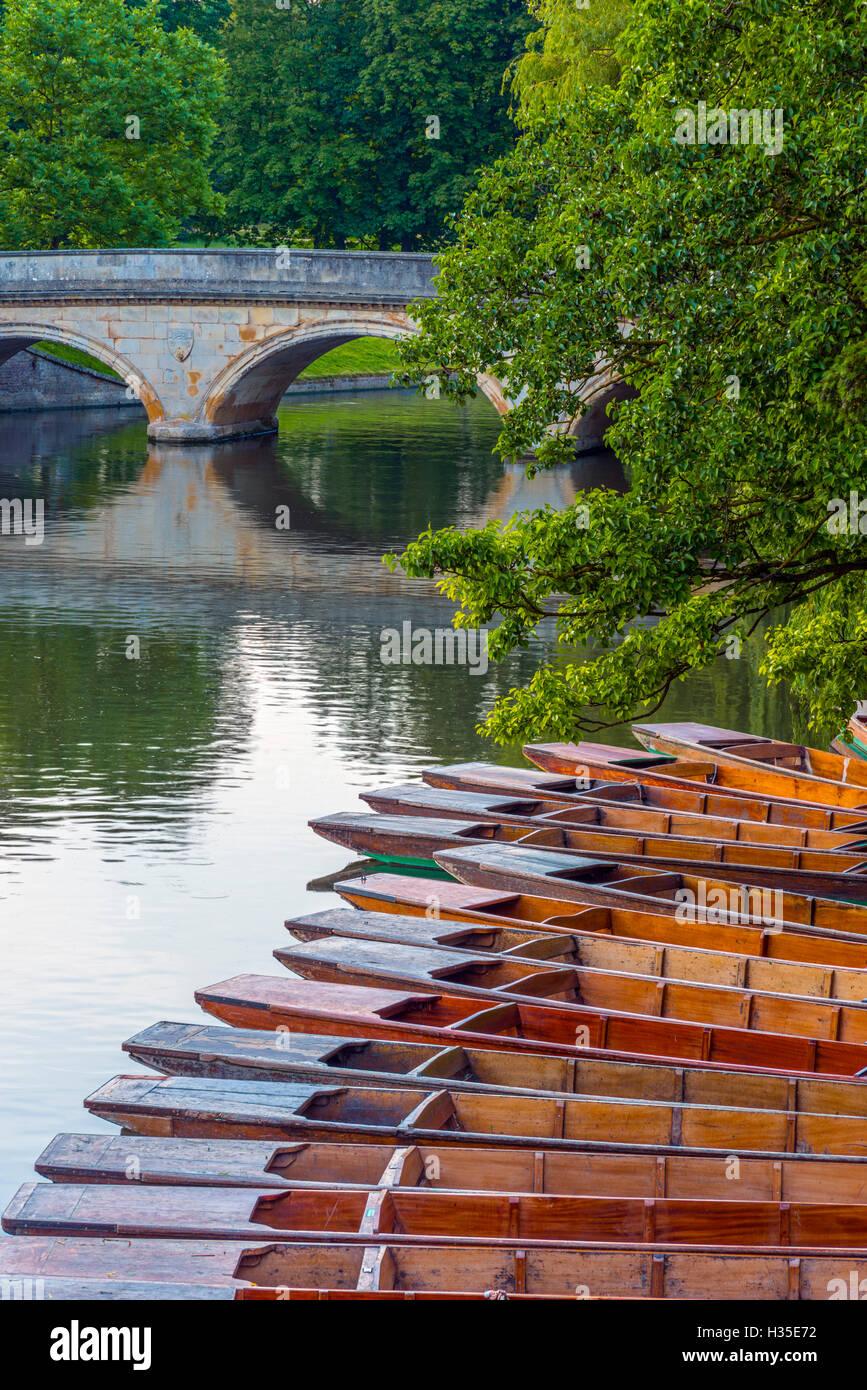 Punts on the River Cam, The Backs, Cambridge, Cambridgeshire, England, UK - Stock Image