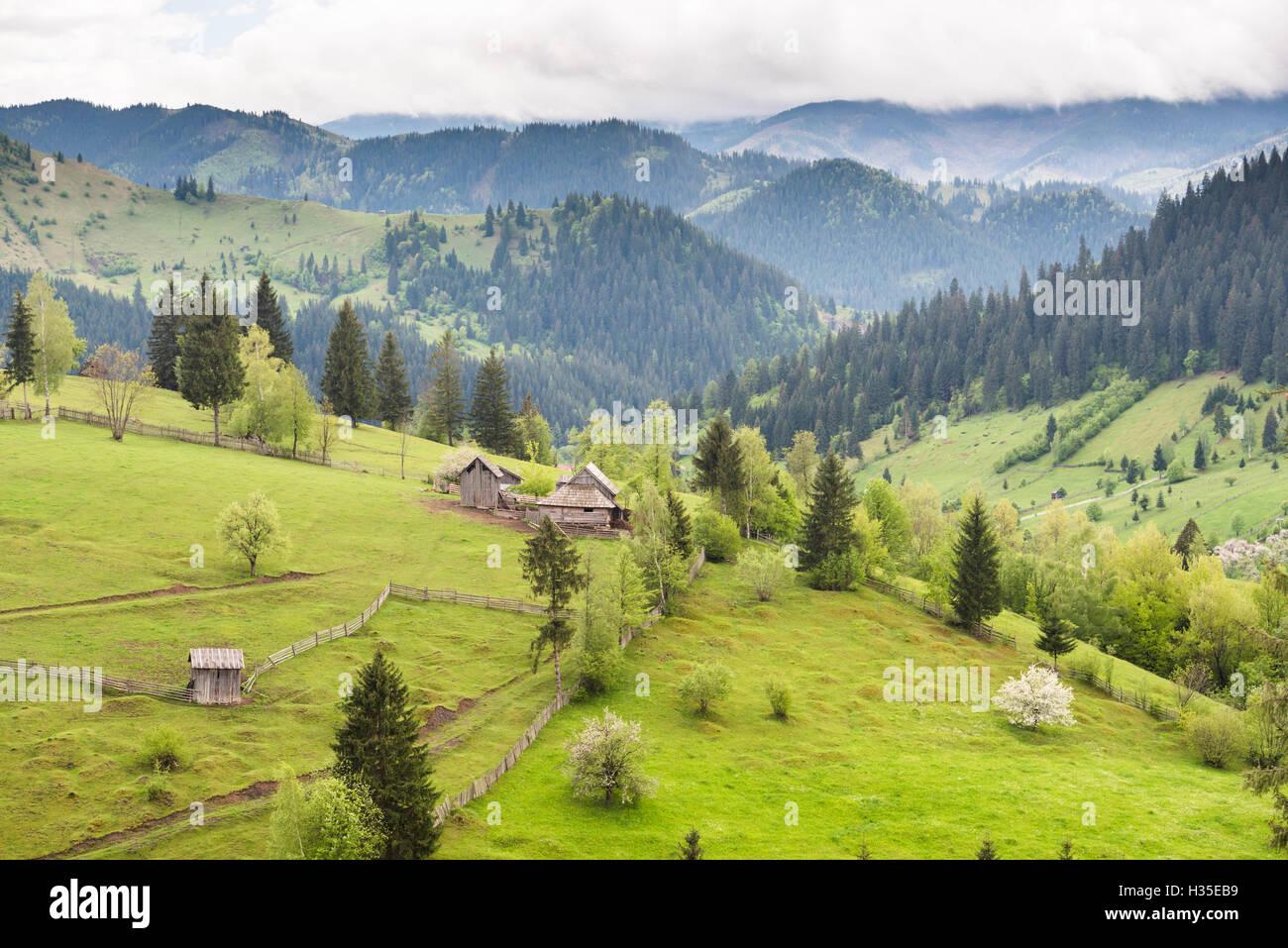Hilly rural landscape of the Bukovina Region at Sadova, Romania - Stock Image