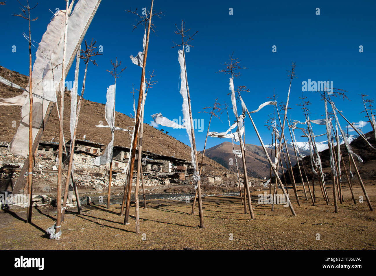 Prayer flags at the small village of Chebisa in northern Bhutan on the Laya-Gasa trekking route, Thimpu district, - Stock Image