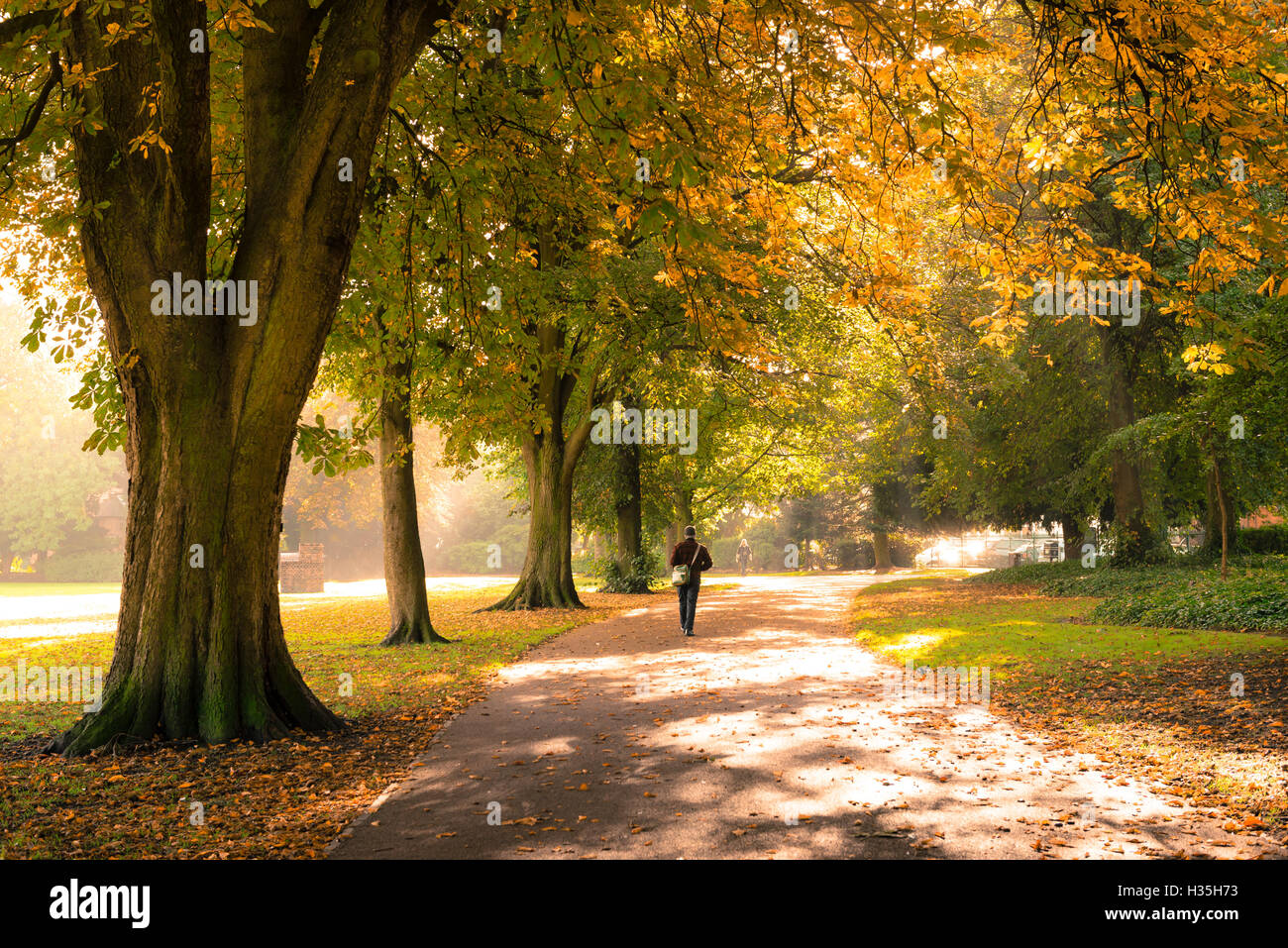 Person walking alone at West Park, Wolverhampton, England, UK - Stock Image