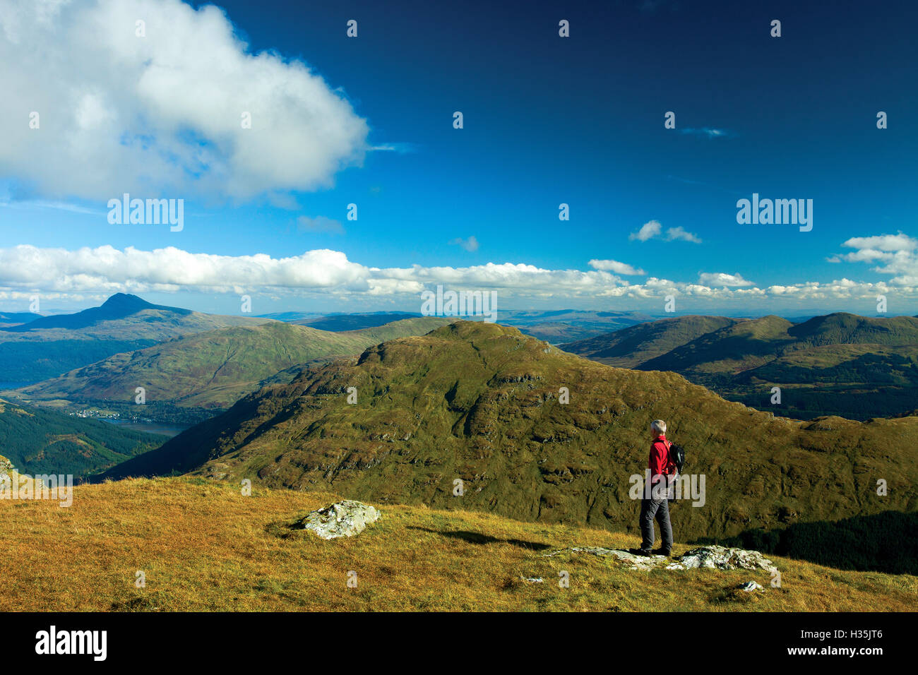 Ben Lomond and The Brack from Ben Donich, the Arrochar Alps, Loch Lomond and the Trossachs National Park, Argyll - Stock Image