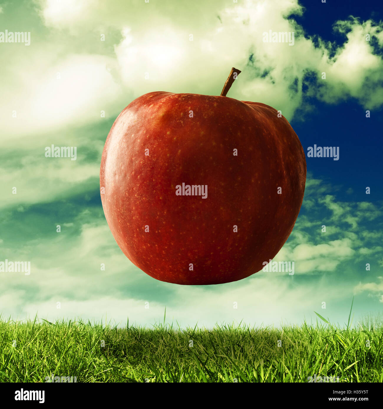 giant apple floating over a meadow, imagination, ideas and creativity concept - Stock Image