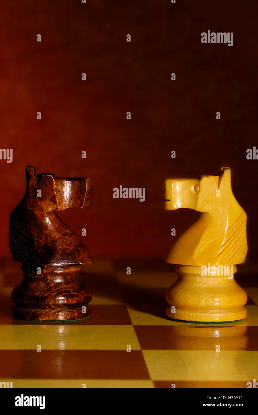 chess knights confronting - Stock Image