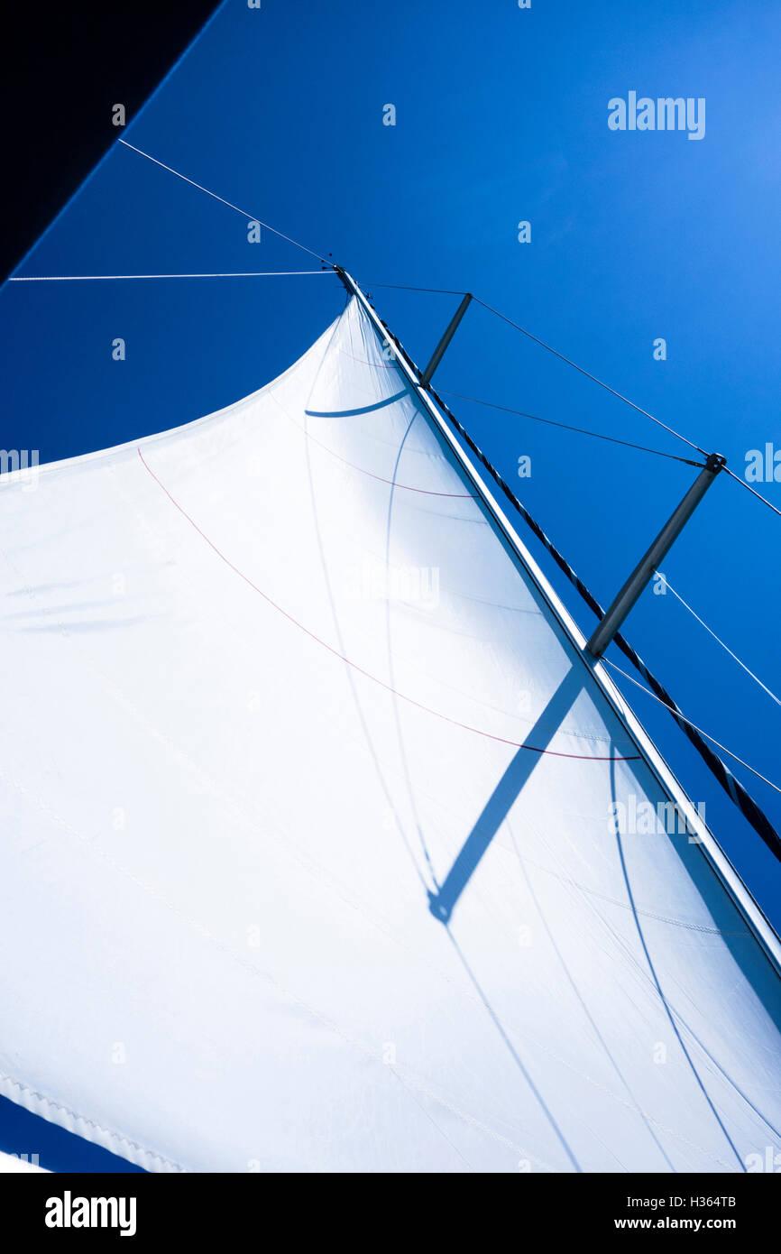 Main sail of a sailing yacht, - Stock Image