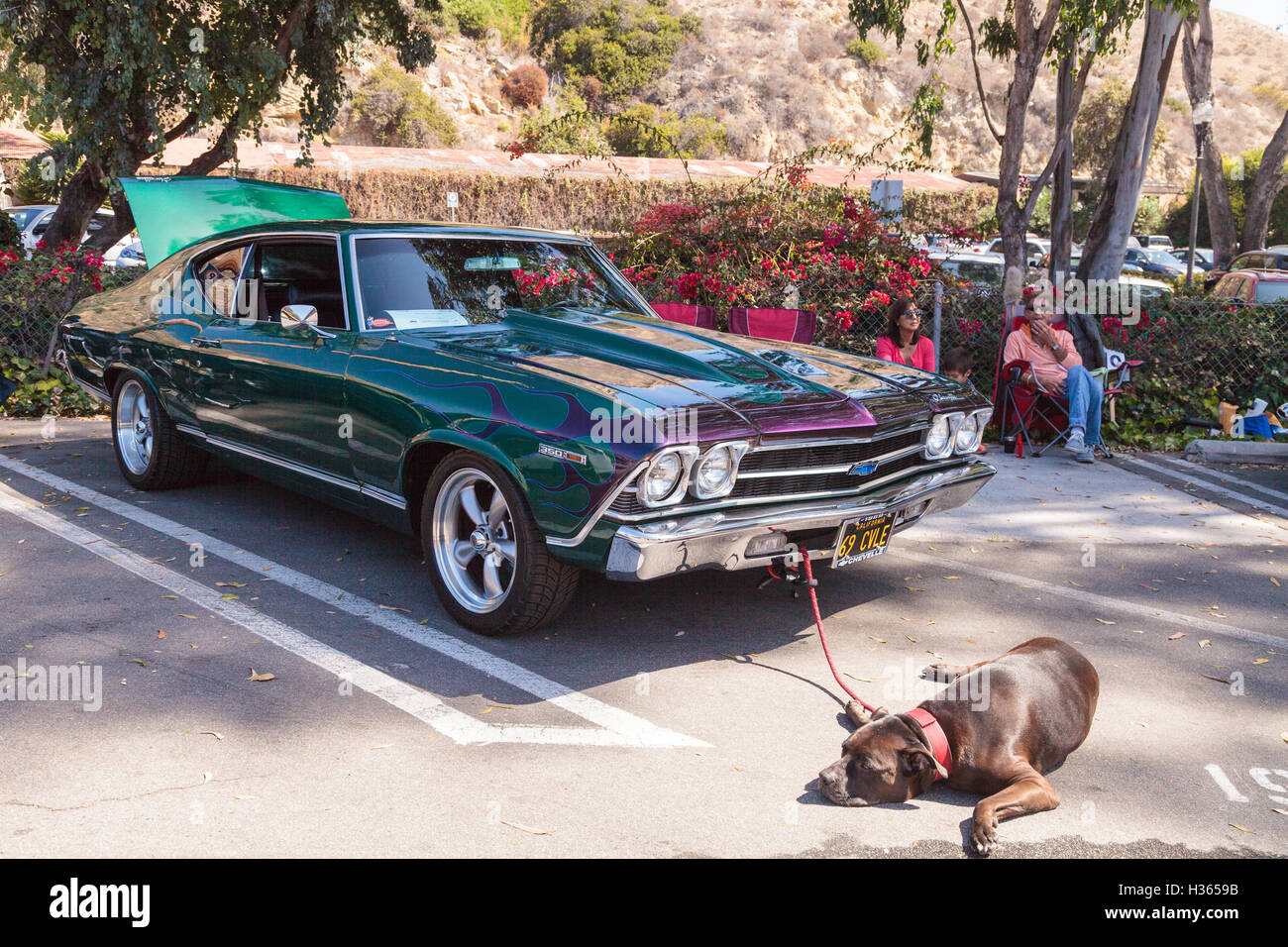 Chevy Chevelle 2016 >> Green And Blue 1969 Chevy Chevelle Owned By John Pettinato