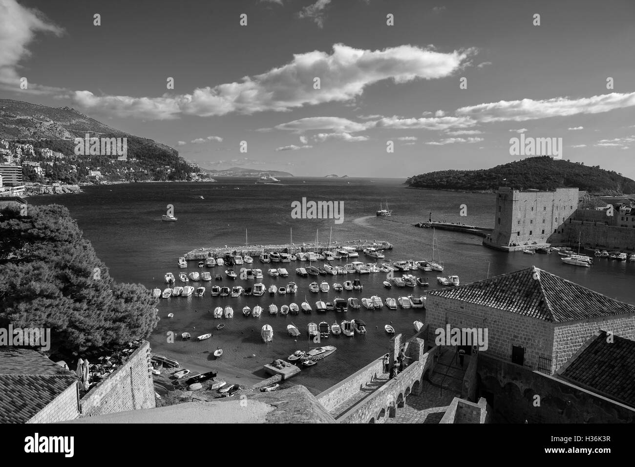 Old Harbour, from the city walls above Ploče Gate, stari grad, Dubrovnik, Croatia - Stock Image