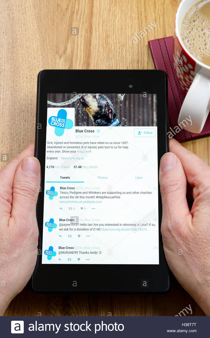 Blue Cross animal charity app on an android tablet PC, Dorset, England, UK - Stock Image