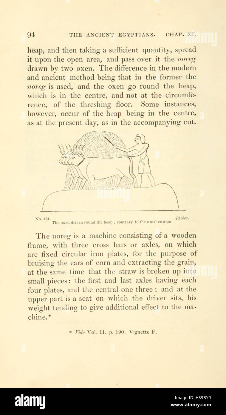 A second series of the Manners and customs of the ancient Egyptians (Page 94) BHL215 - Stock Image