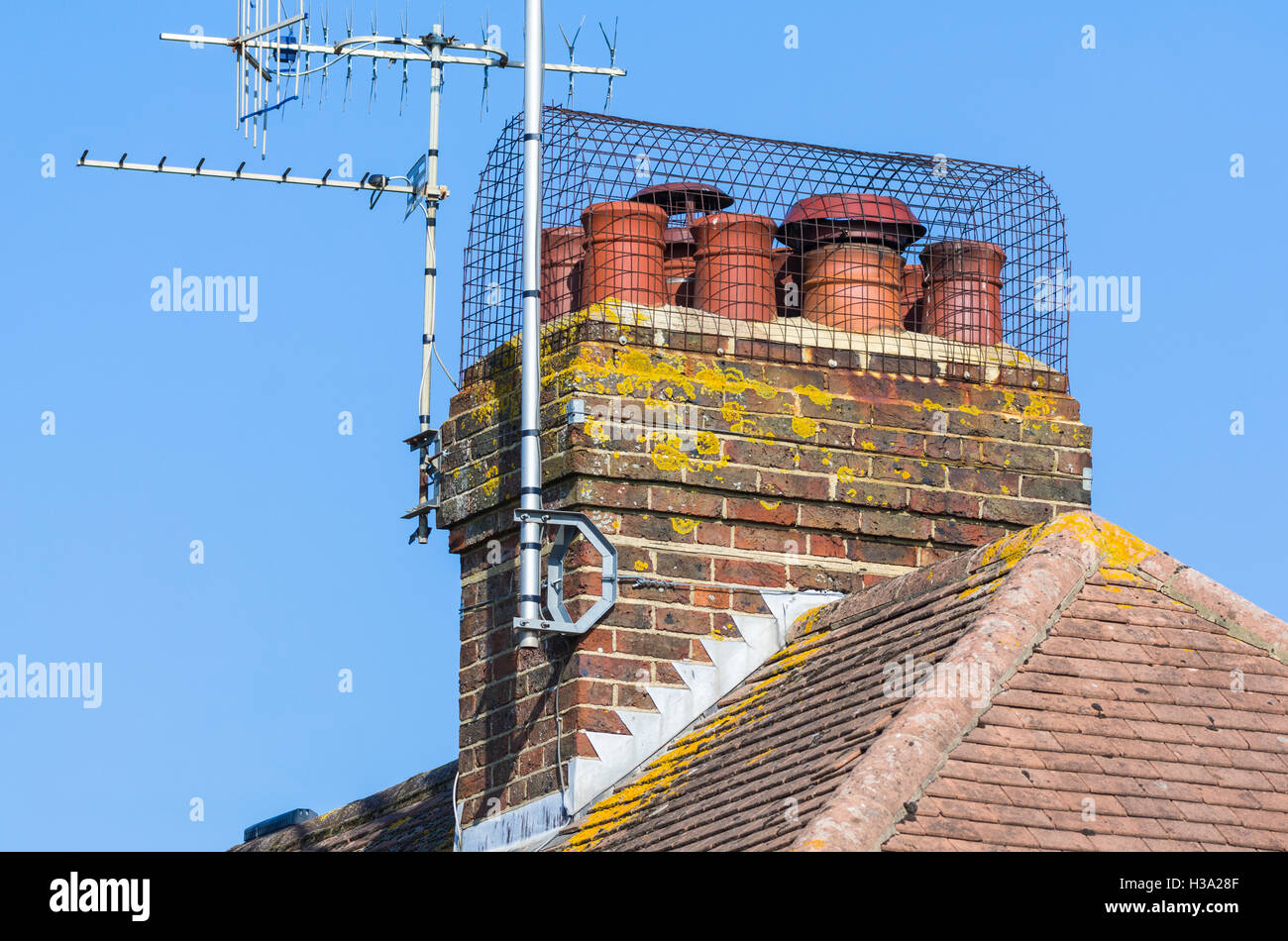 Wire balloon chimney cowl bird guard over an old red brick chimney stack in the UK. - Stock Image