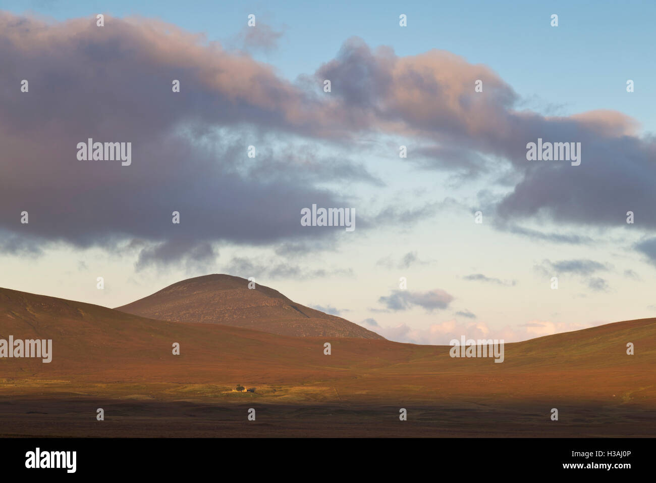 Ben Griam Mor mountain with remote croft, Sutherland - Stock Image