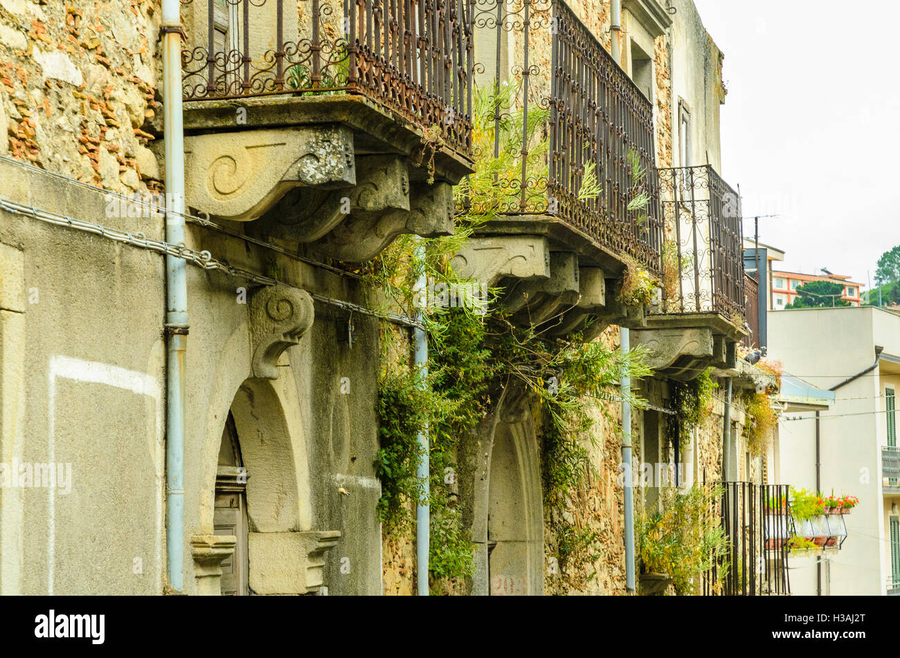 Weeds grow around balconies in the town of Montalbano Elicona in the Province of Messina, Sicily, Italy - Stock Image