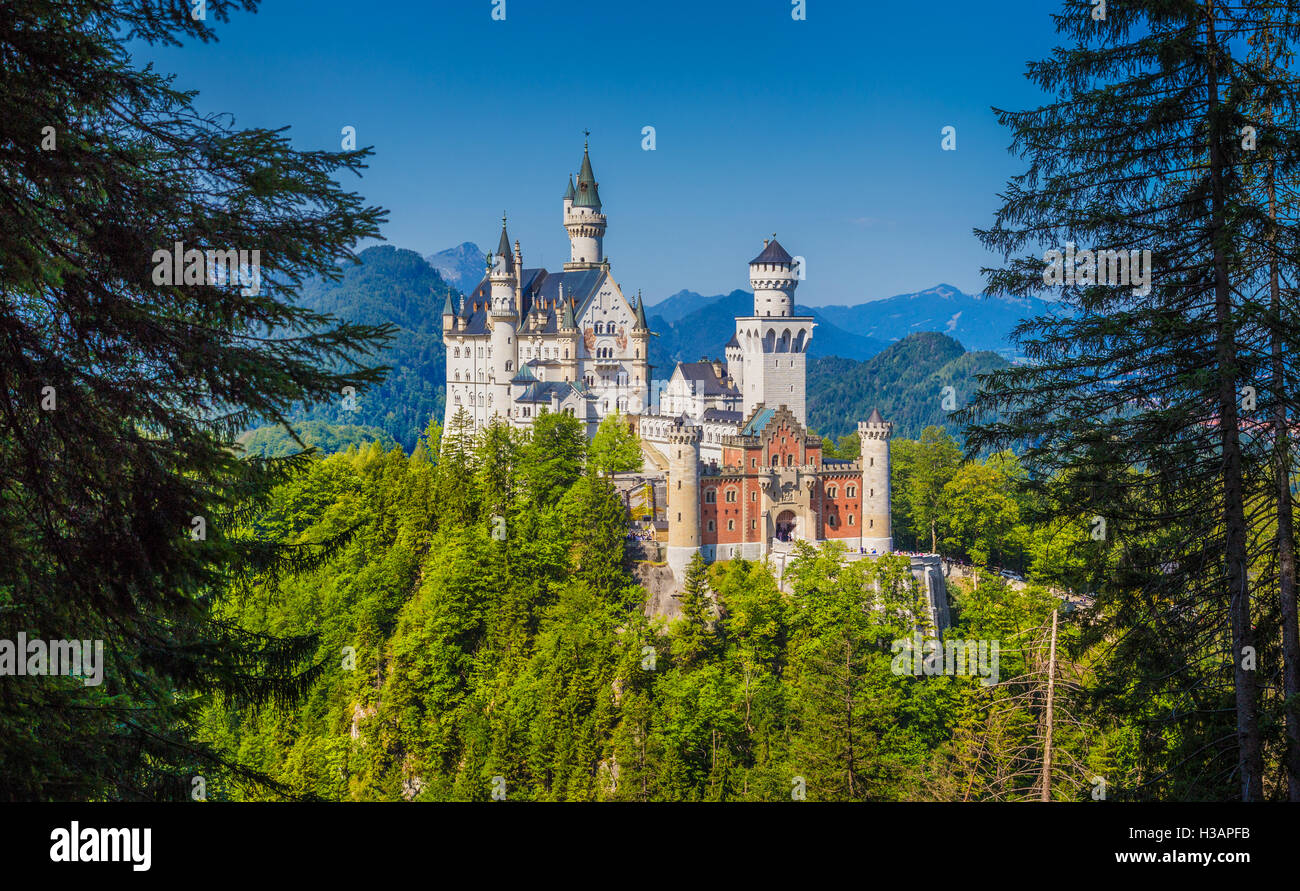 Unique frontal view of famous Neuschwanstein Castle near the town of Fussen on a sunny day in summer, Bavaria, Germany - Stock Image