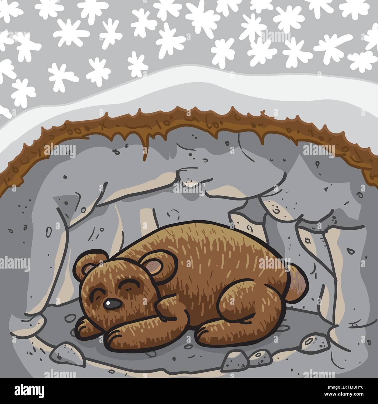 hibernation bear winter sleep animal stock photos. Black Bedroom Furniture Sets. Home Design Ideas