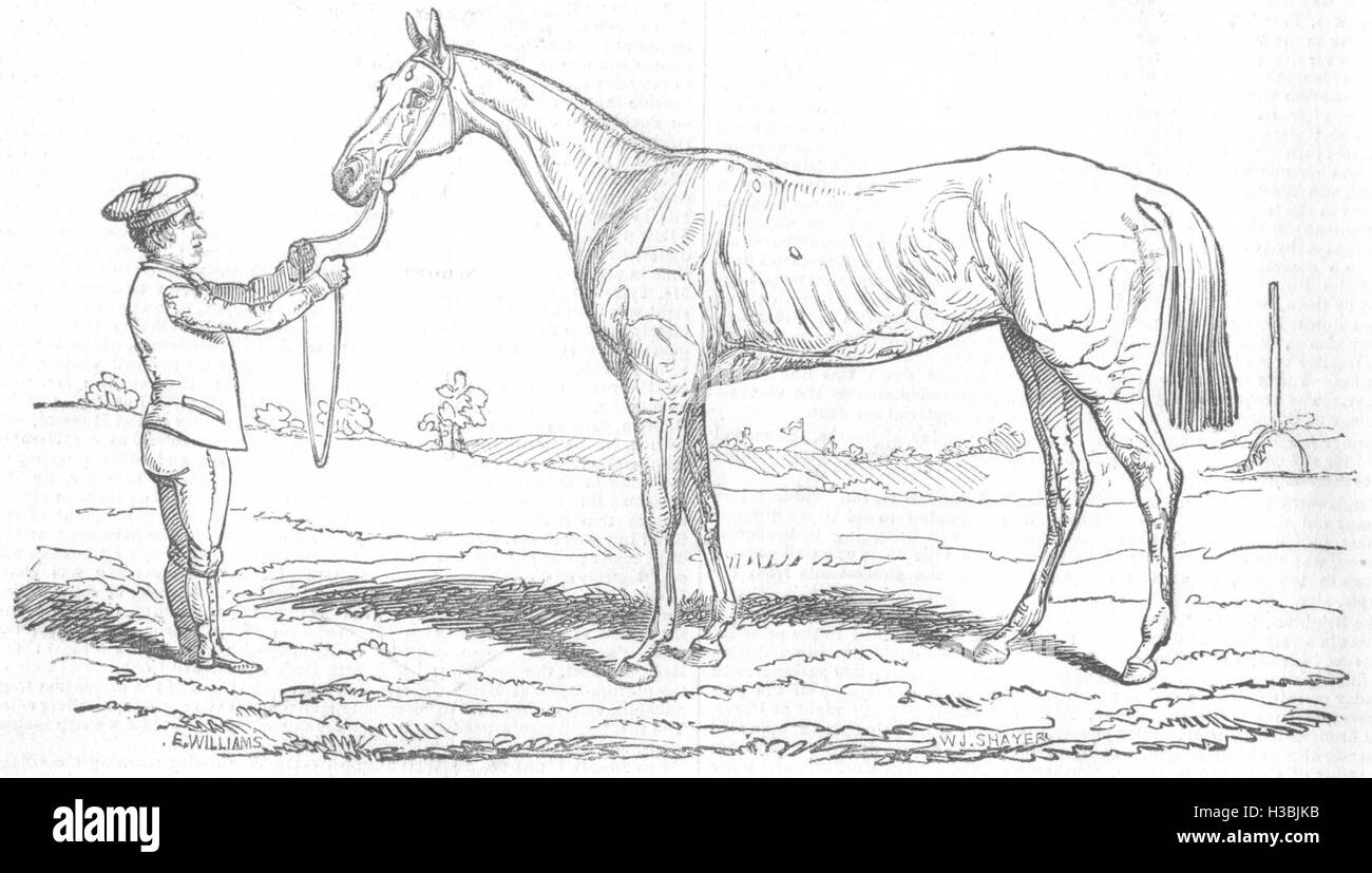 ROYALTY The Princess, Winner of The Oaks 1844. The Illustrated London News - Stock Image