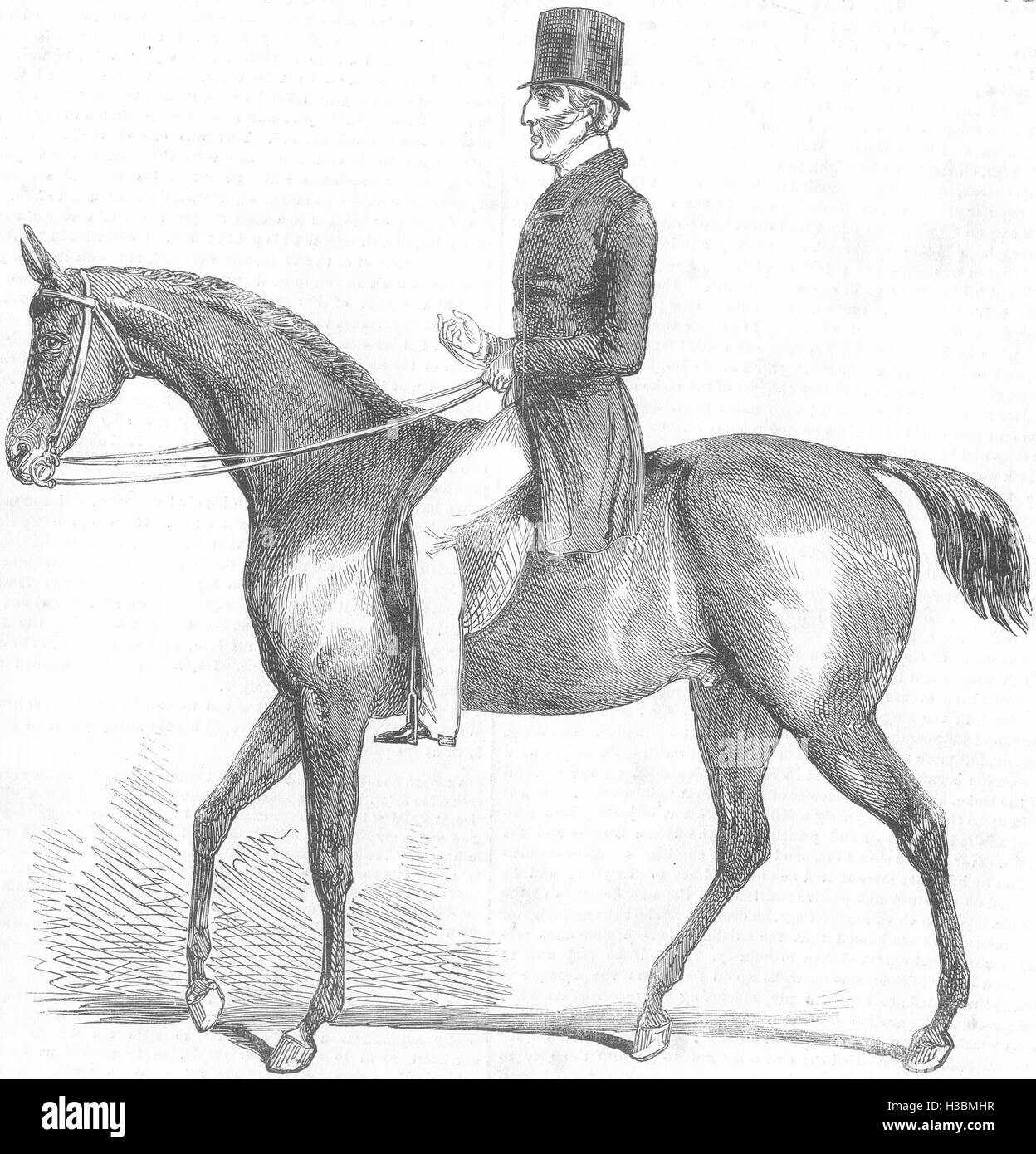 HORSES Wellington 1852. The Illustrated London News - Stock Image