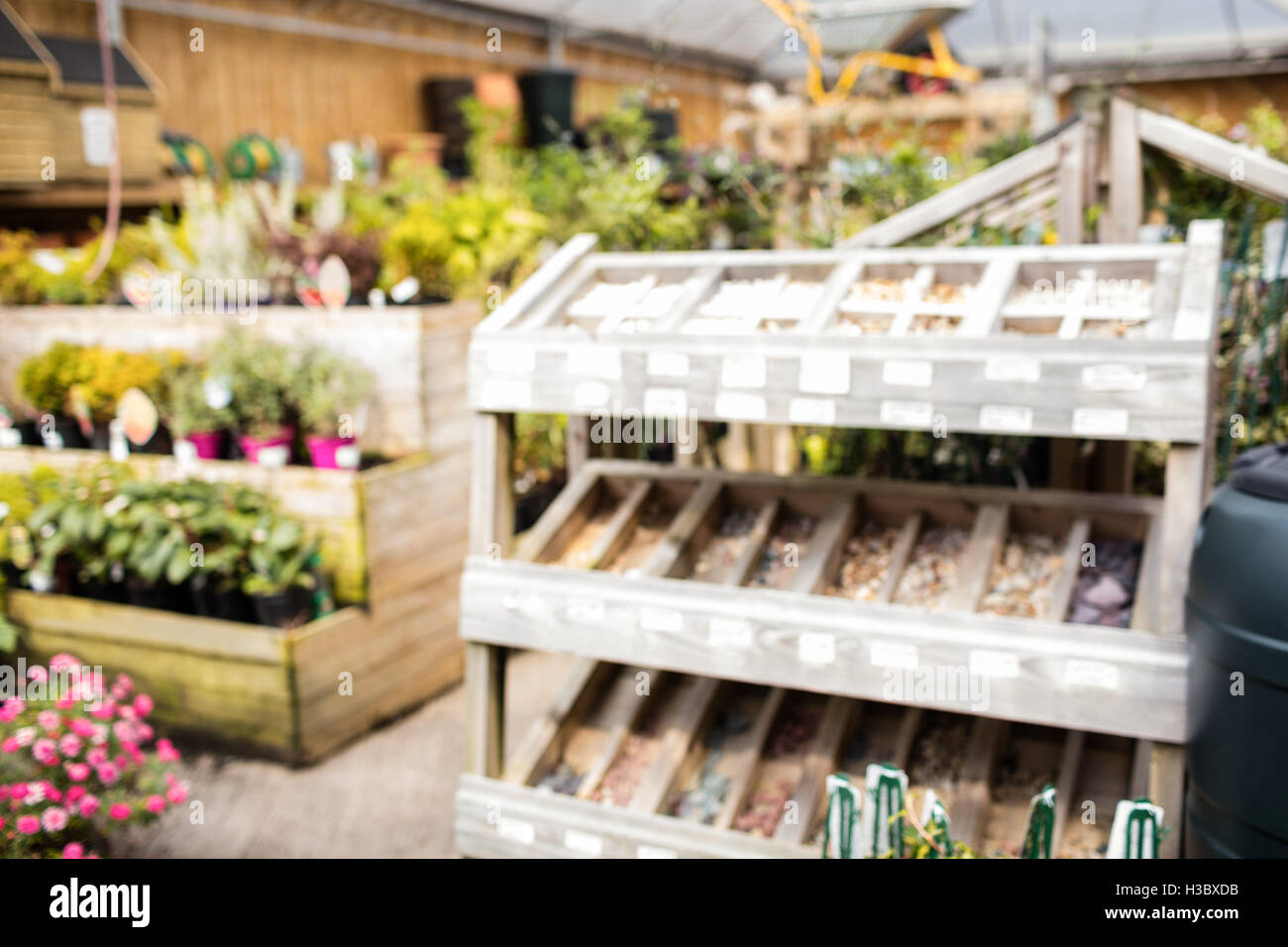 Potted plants and wooden shelf in garden centre - Stock Image