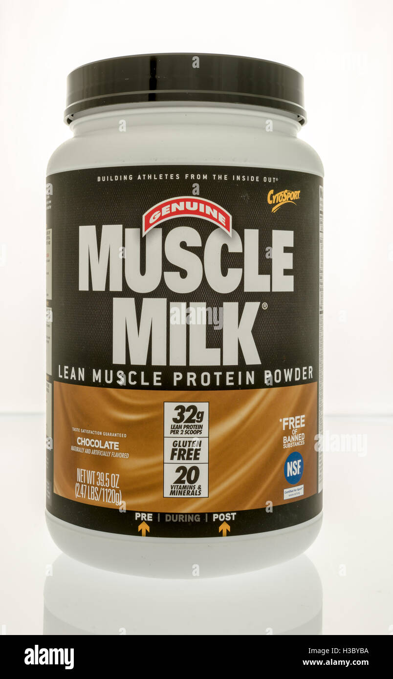 Winneconne, WI - 29 September 2016:  Container of Muscle milk protein powder on an isolated background. - Stock Image