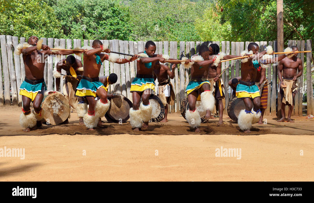 Swazi dance troupe in traditional clothes chanting singing and dancing at Mantenga Cultural Village,  Ezulwini Valley,Swaziland - Stock Image