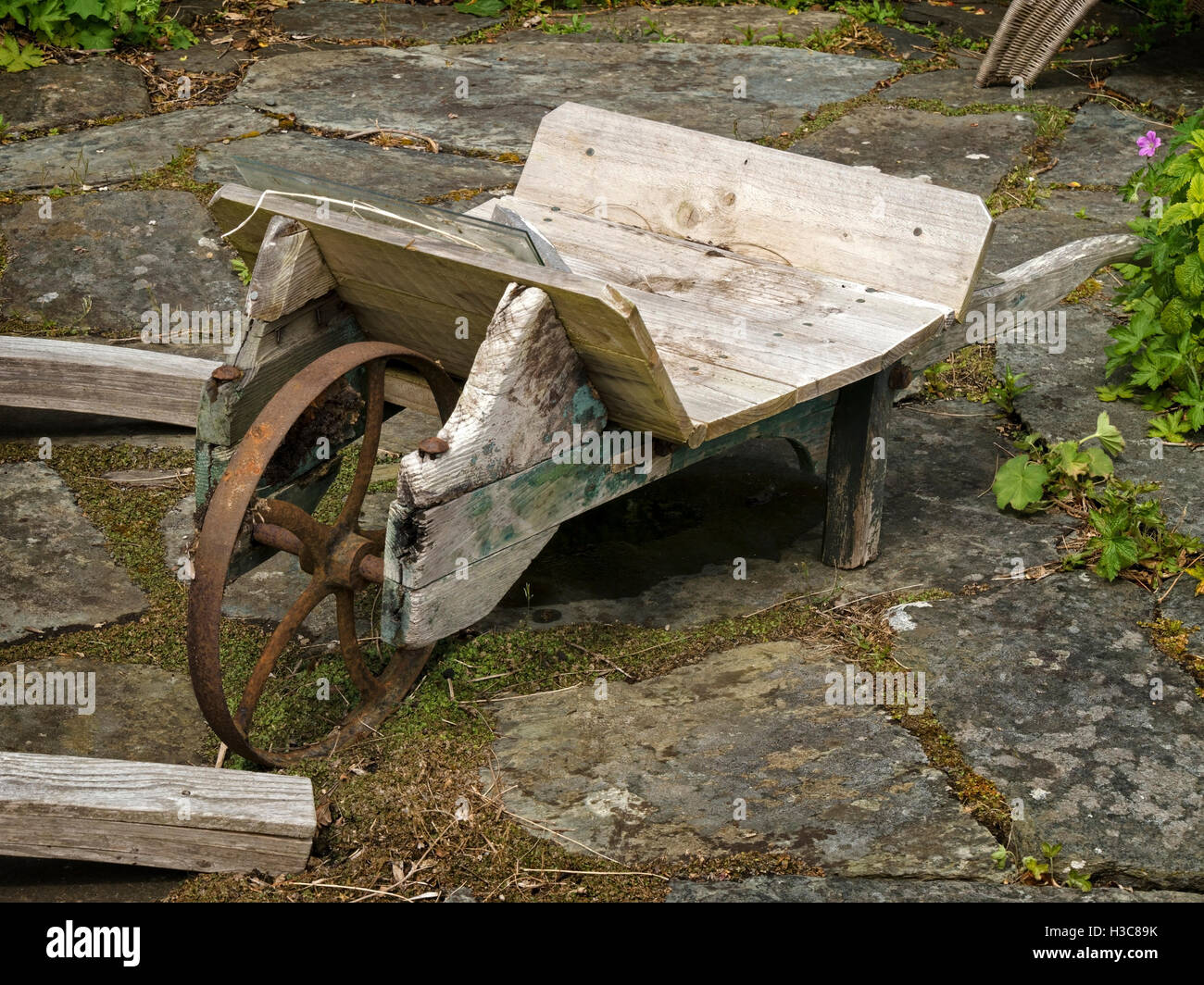 Old Wooden Garden Wheelbarrow, Colonsay House Gardens, Isle Of Colonsay,  Scotland, UK