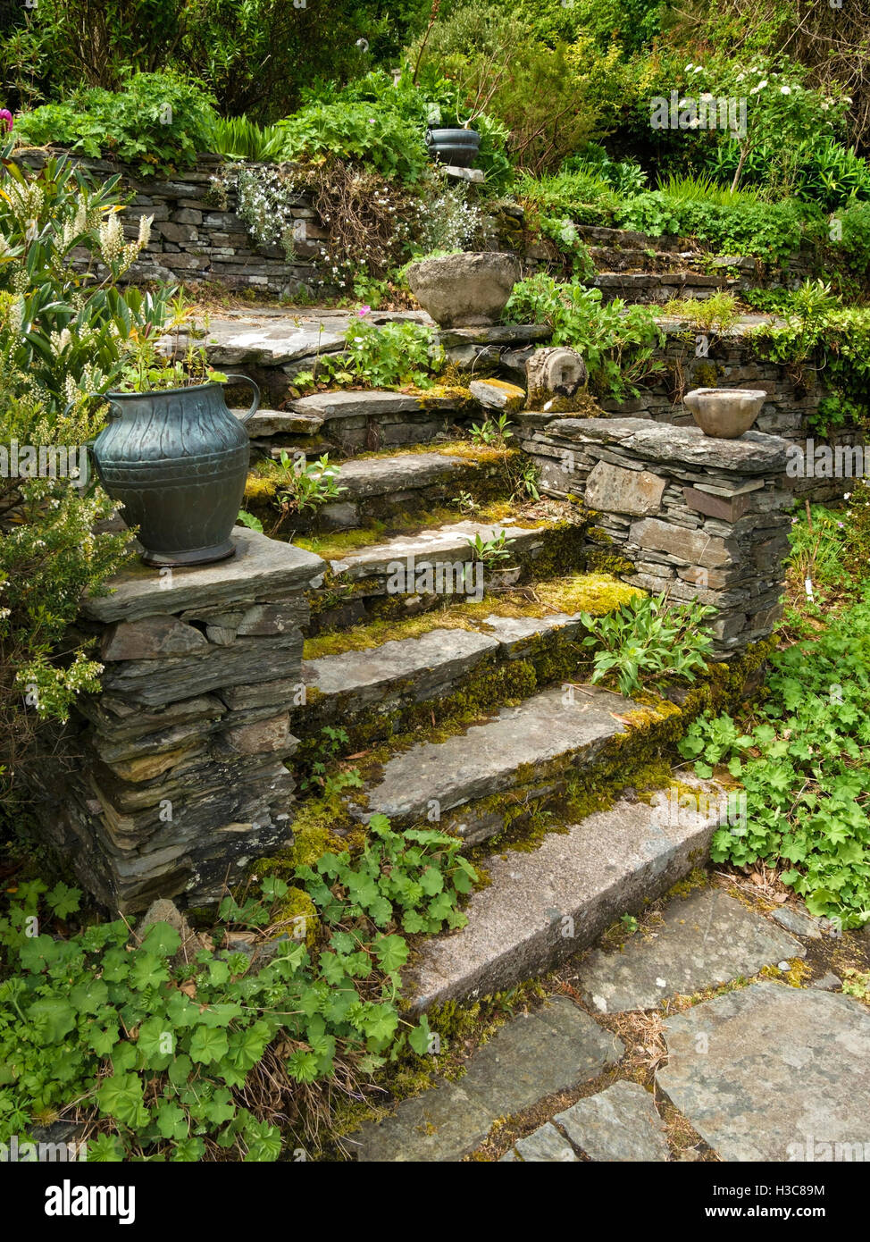 Old, overgrown, rustic stone steps with urn, Colonsay House Gardens ...