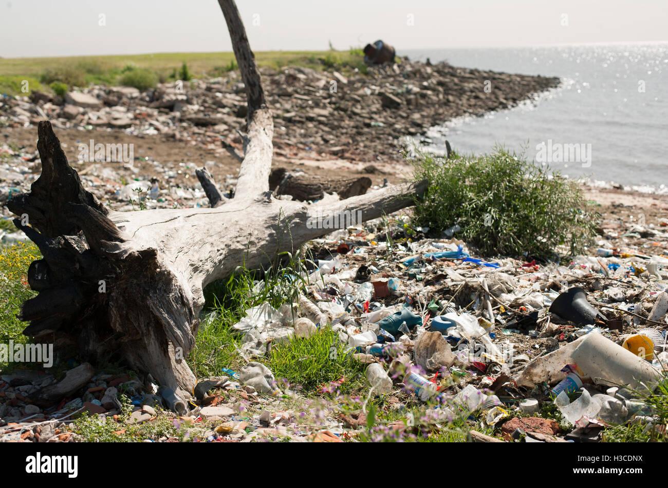 Trash washed up on shore Stock Photo
