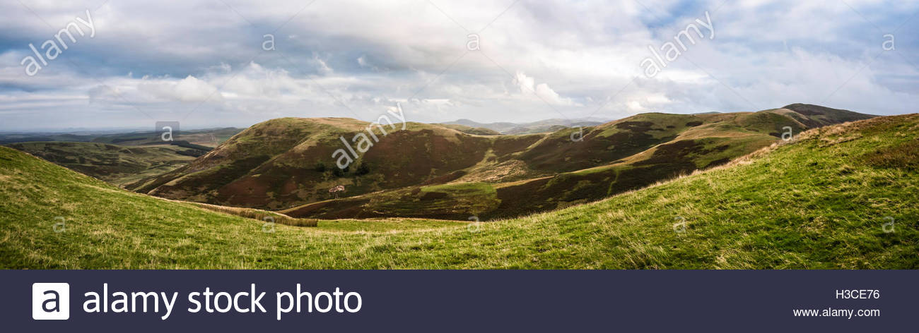 Looking north east from Hindhope Hill (411m) along the Anglo Scot border. - Stock Image