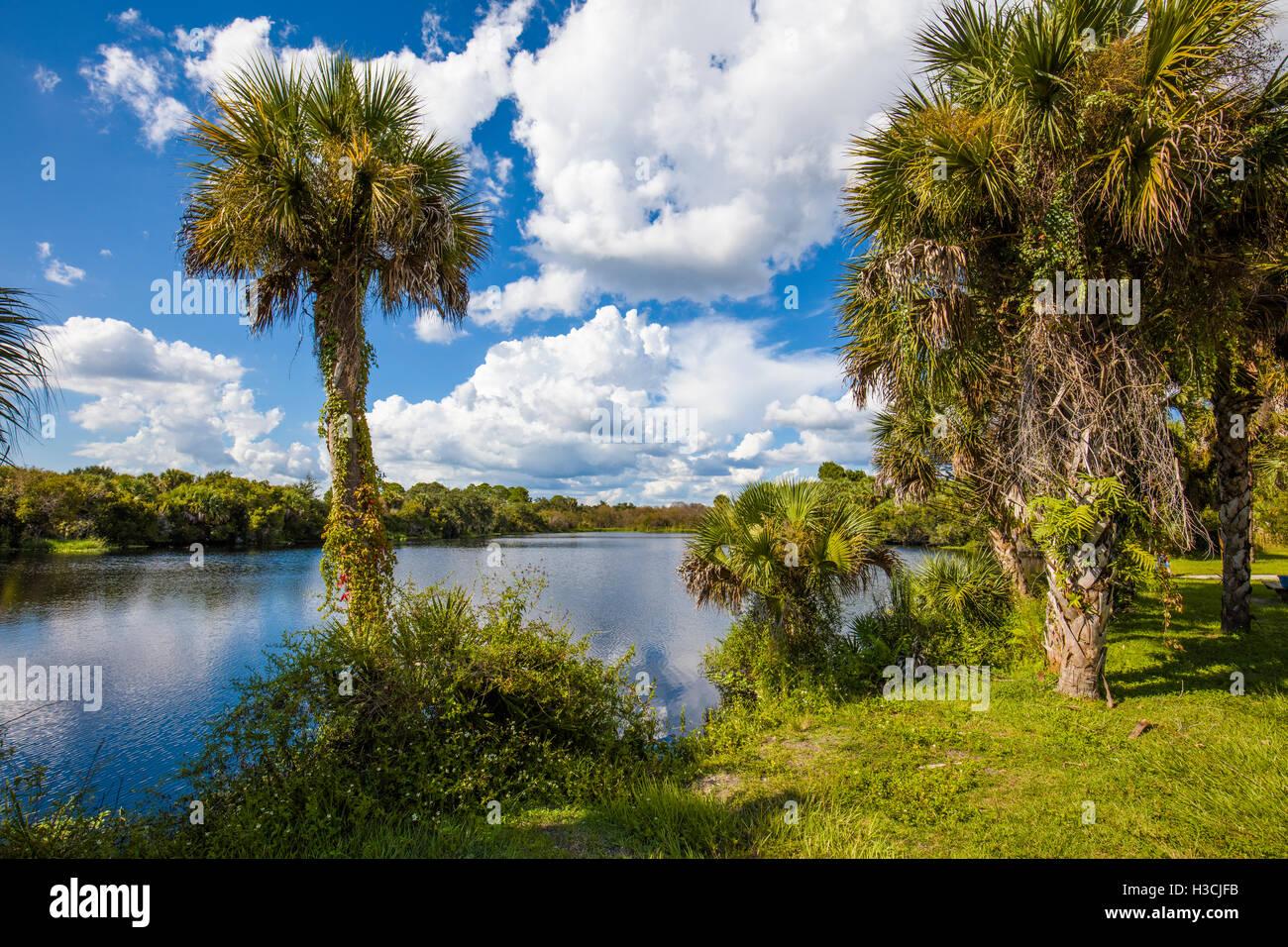 Deer Prairie Creek Preserve in Venice Florida Stock Photo