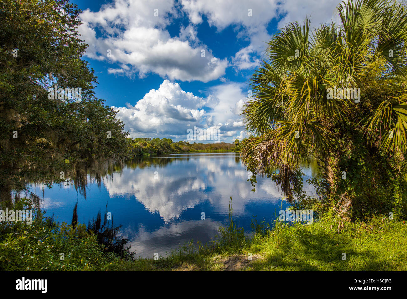Deer Prairie Creek Preserve in Venice Florida Stock Photo