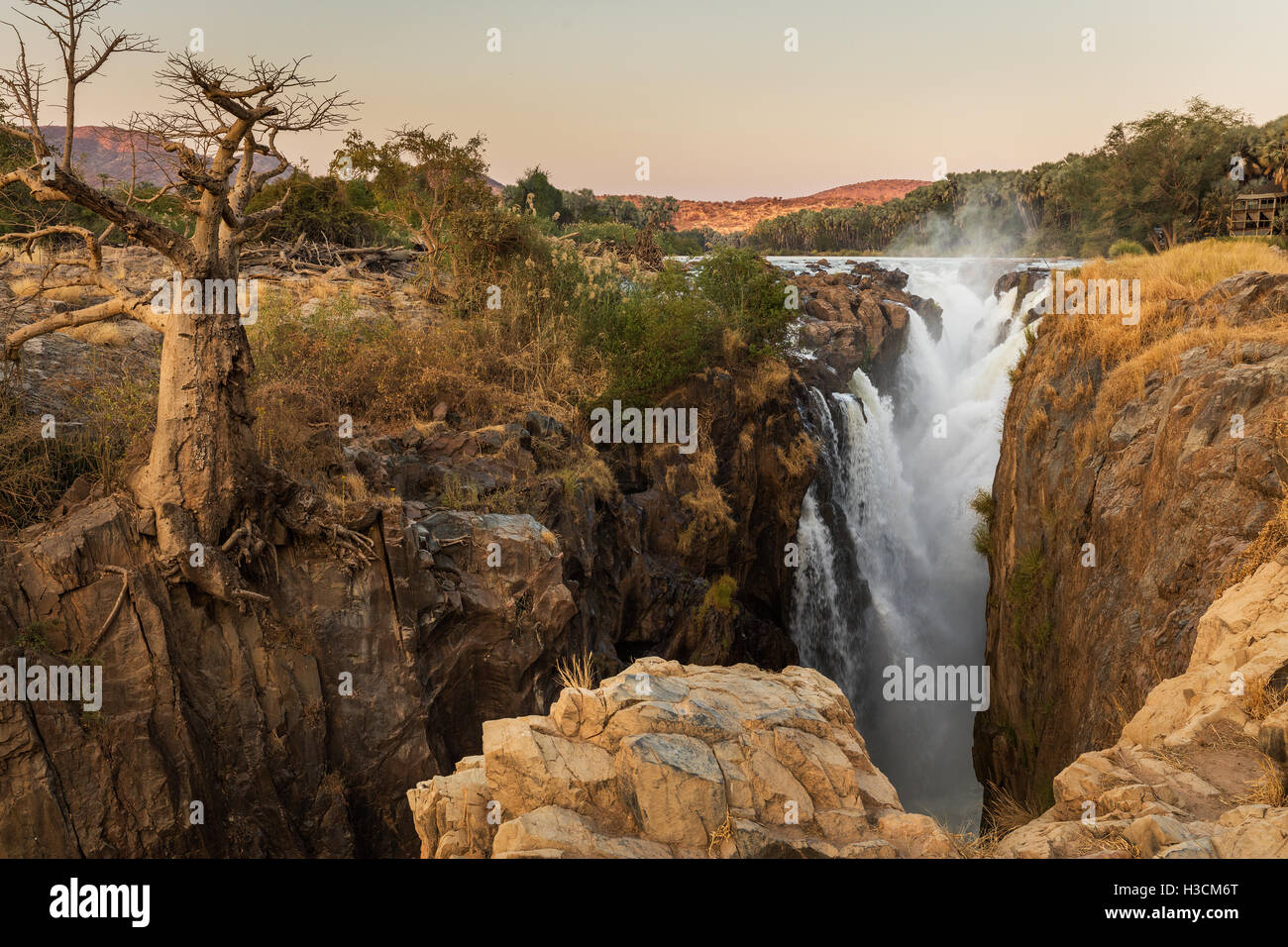 A baobab clings to the edge of the gorge of Epupa falls, on the Kunene river in the Kaokoveld of northern namibia. - Stock Image