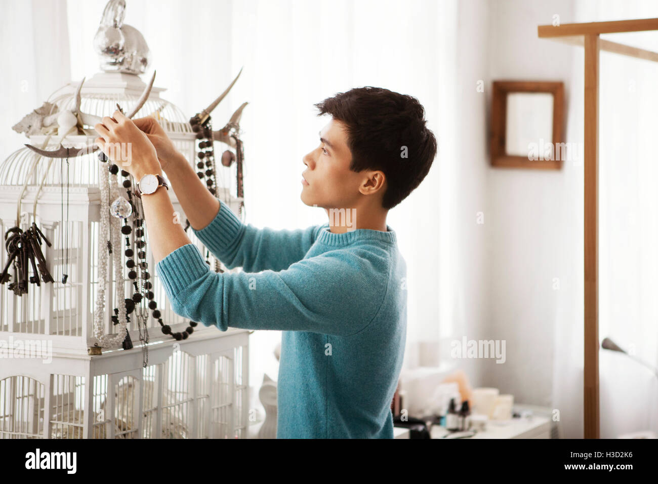 Side view of man decorating house - Stock Image
