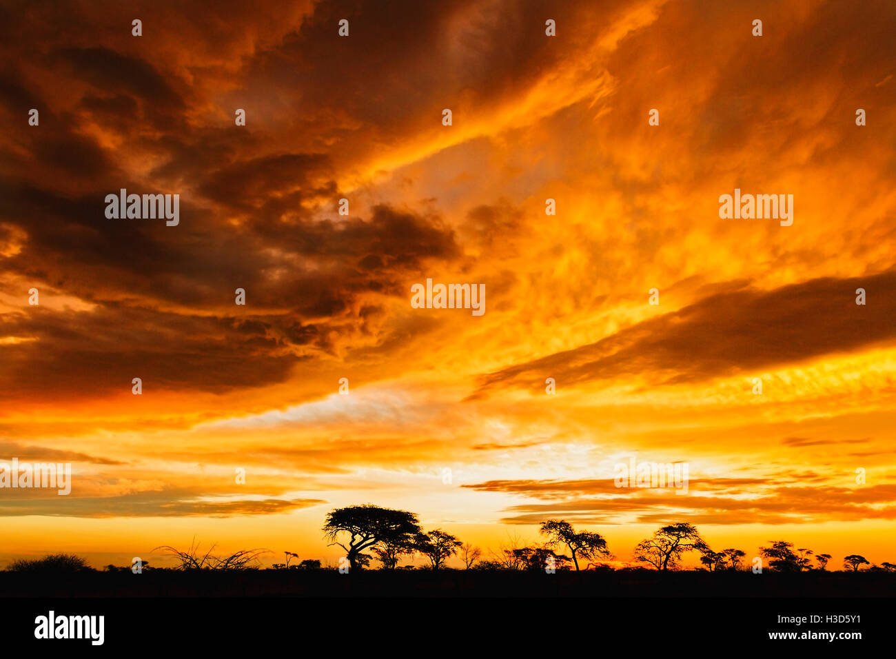 Dramatic sunset following a storm at Makgadikgadi Pans National Park, Botswana - Stock Image