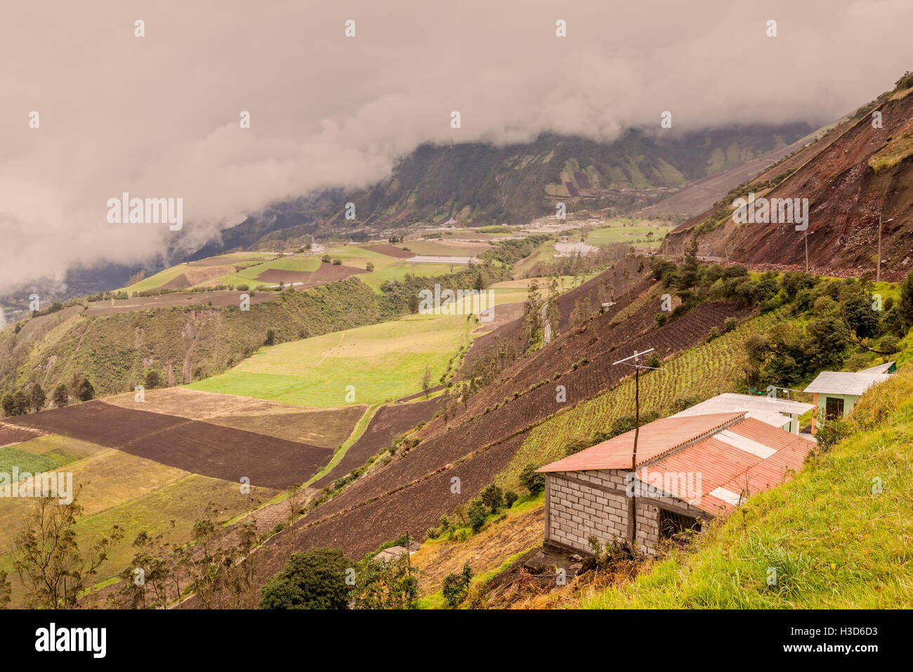 Farmers In The Peaks Of The Andean Cordillera, Ecuador, South America Stock Photo
