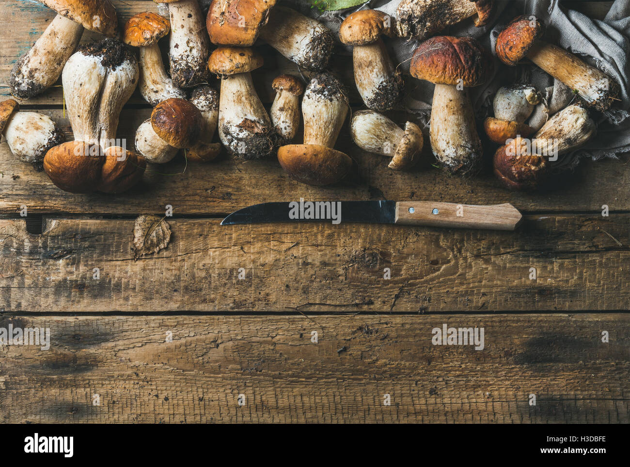 White forest mushrooms and knife on rustic wooden background - Stock Image