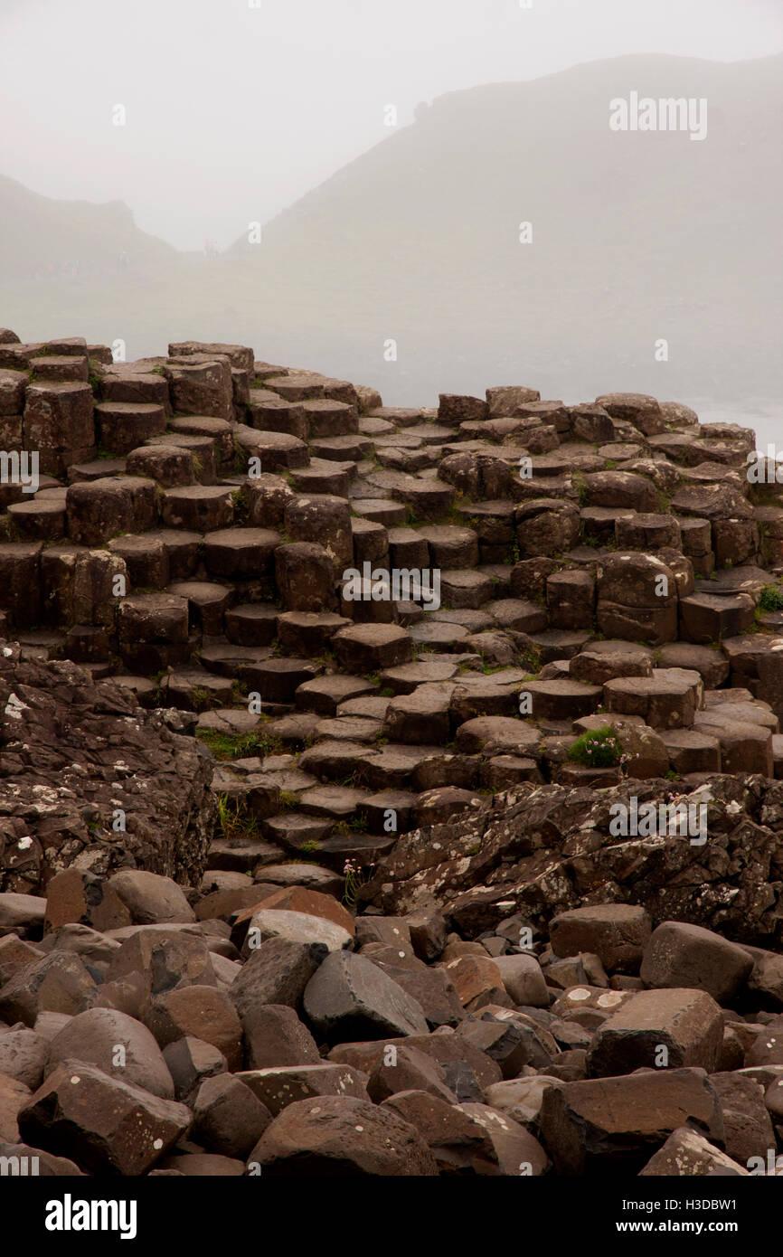 Giants Causeway Northern Ireland - Stock Image