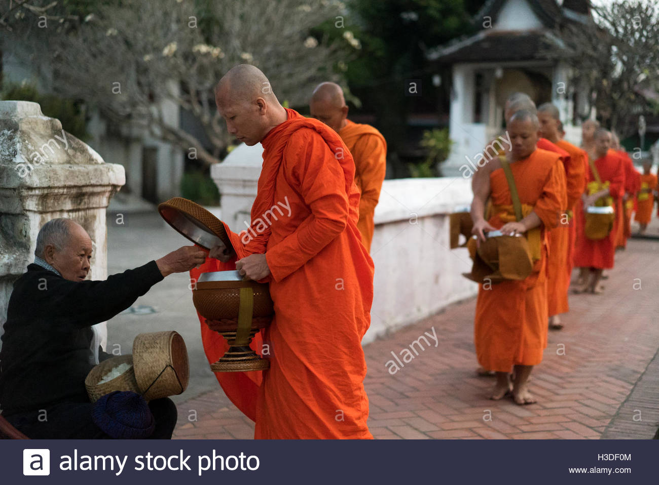 Early morning alms giving to monks in Luang Prabang, Laos. Stock Photo