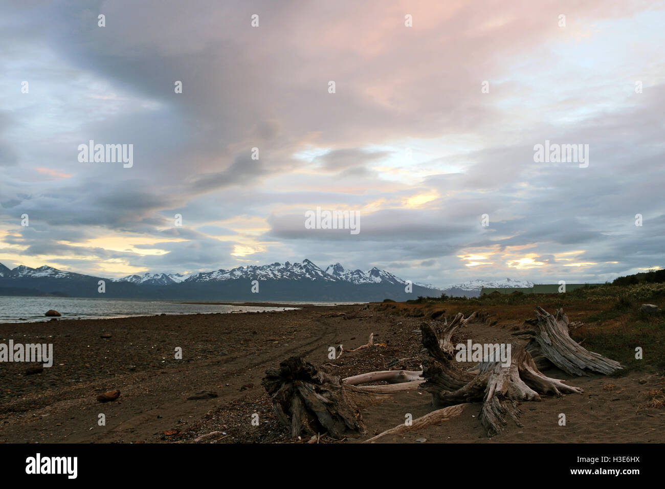 Beagle channel under a cloudy eventide, view from an Ushuaia site with trunks and bedrocks - Stock Image