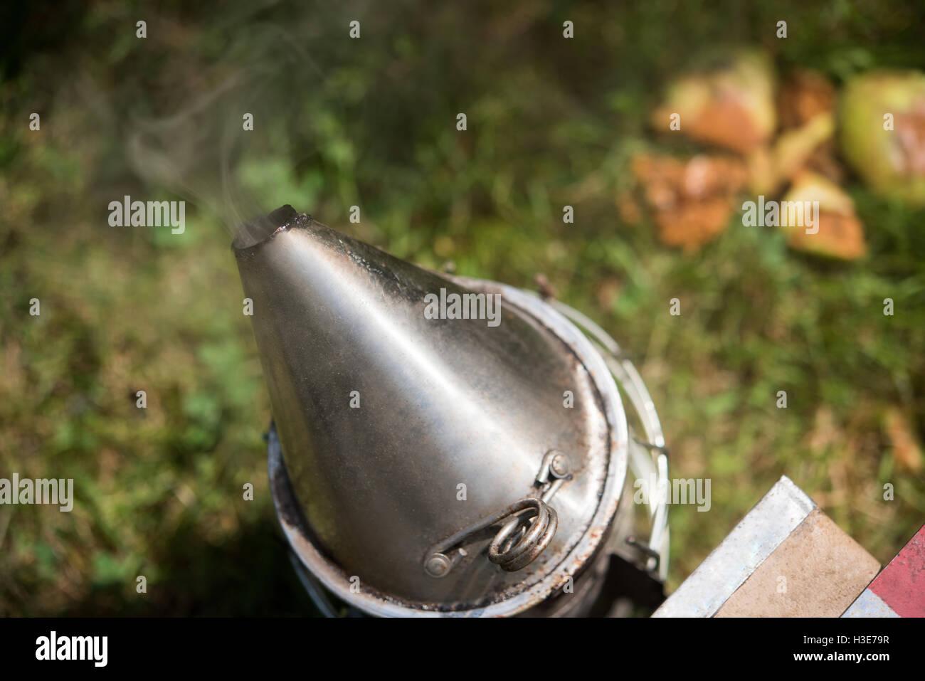 Bee smoker in apiary garden - Stock Image