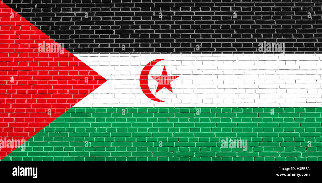 Sahrawi national official flag. Western Sahara patriotic symbol. SADR banner, element, background. Correct size, - Stock Image