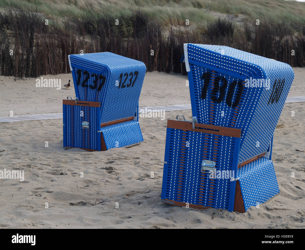 the beach of langeoog Stock Photo