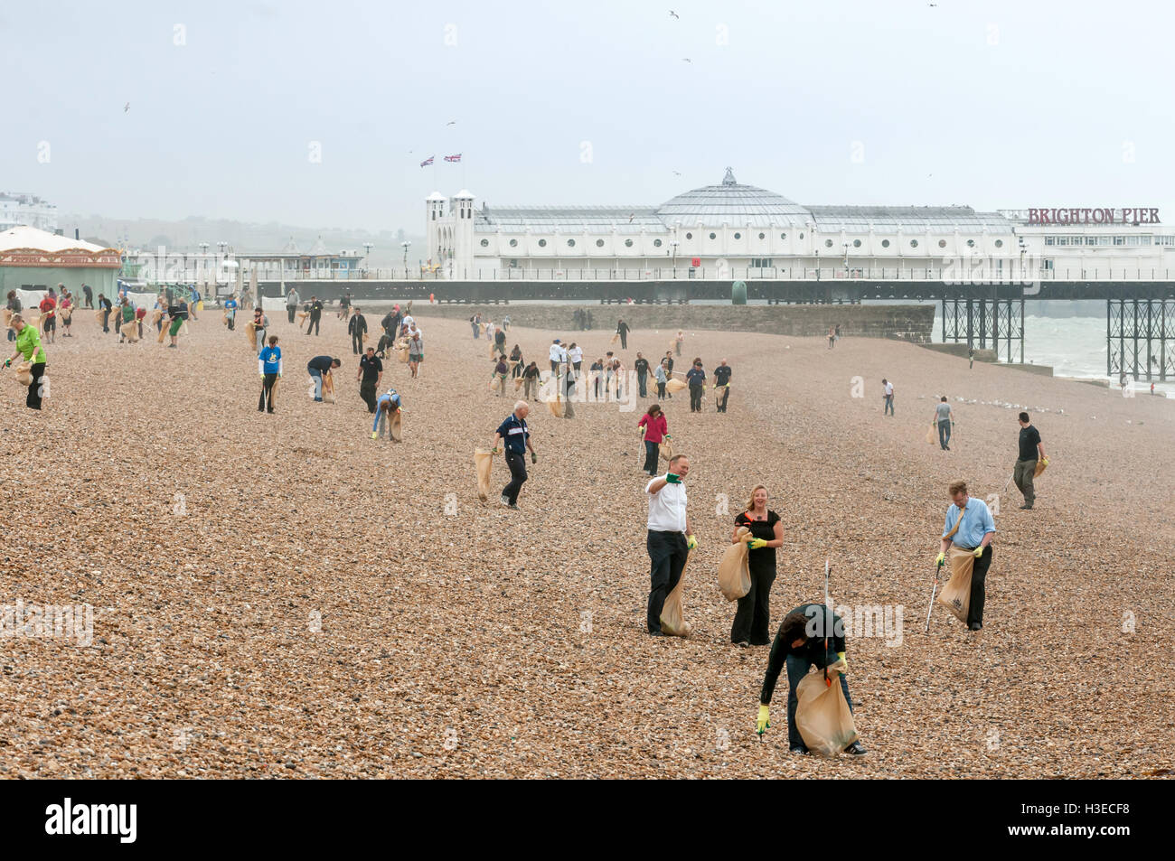 Volunteers responded to Brighton Council's call for volunteers to help clean up the city's beach after lots - Stock Image