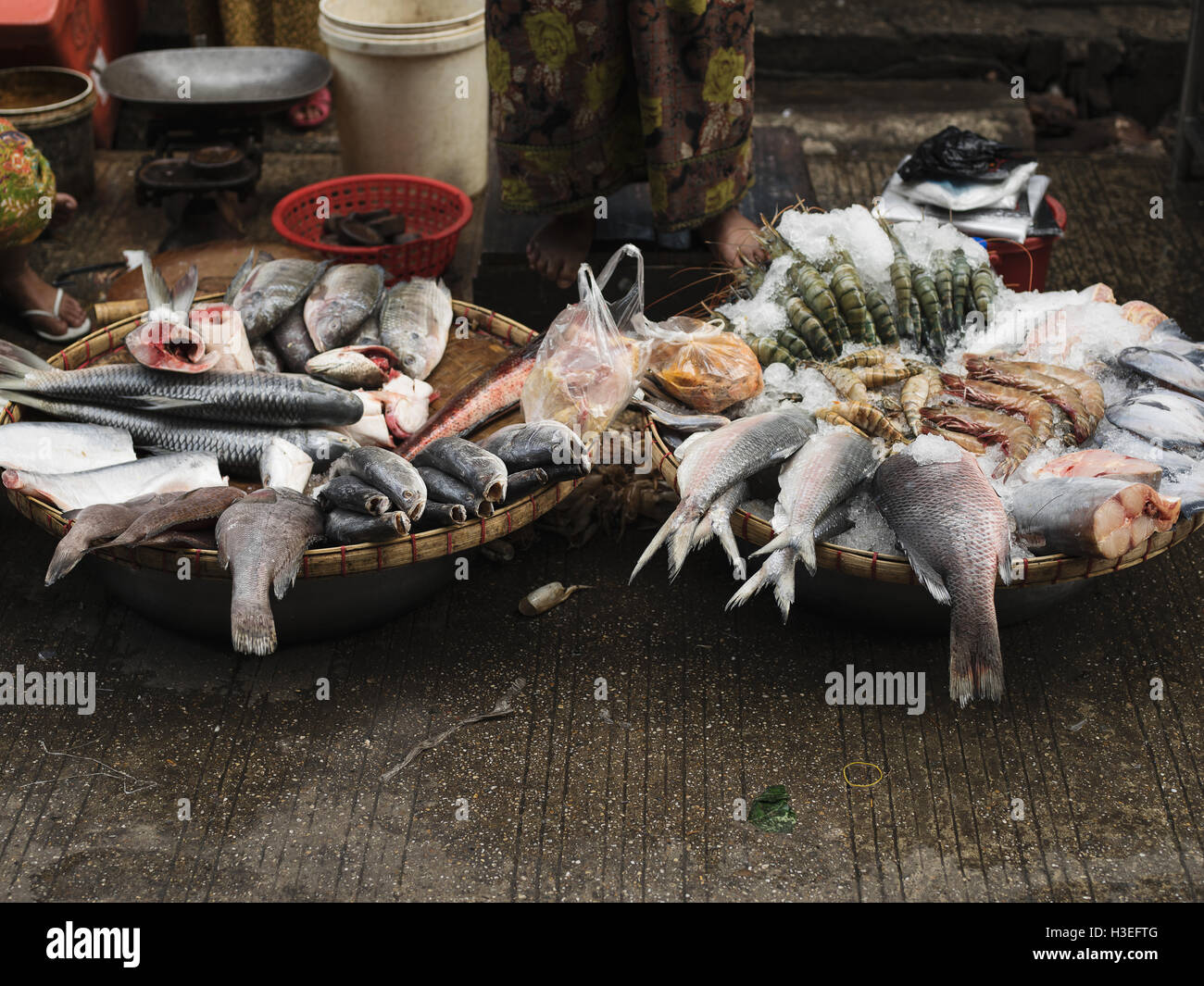 Fresh catches sold at the fish market in Yangon, Myanmar (Burma) - Stock Image