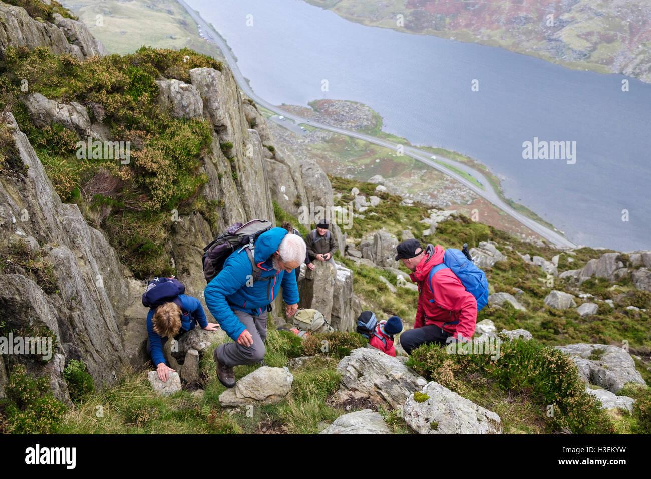 Hikers scrambling up Mount Tryfan north ridge above Llyn Ogwen in mountains of Snowdonia National Park (Eryri). - Stock Image