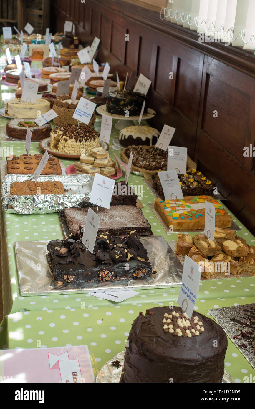 Cakes For Sale By Womens Institute at the Thame Food Festival Oxfordshire England United Kingdom UK - Stock Image